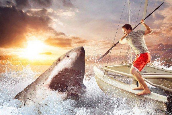 John Lee Dumas a combater tubarões