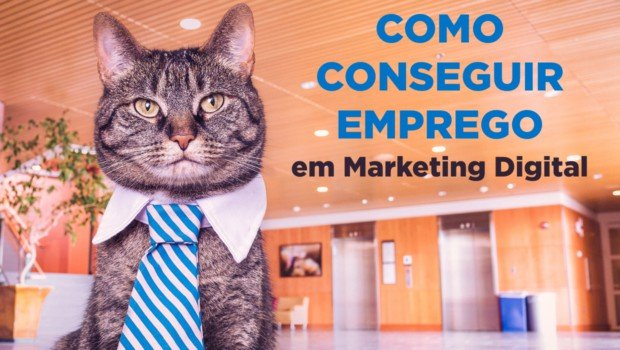 Como Conseguir Emprego em Marketing Digital
